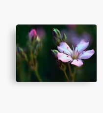 Delicate Pink Flowers Painting Canvas Print