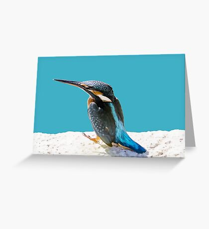 A Beautiful Kingfisher Bird Vector Greeting Card