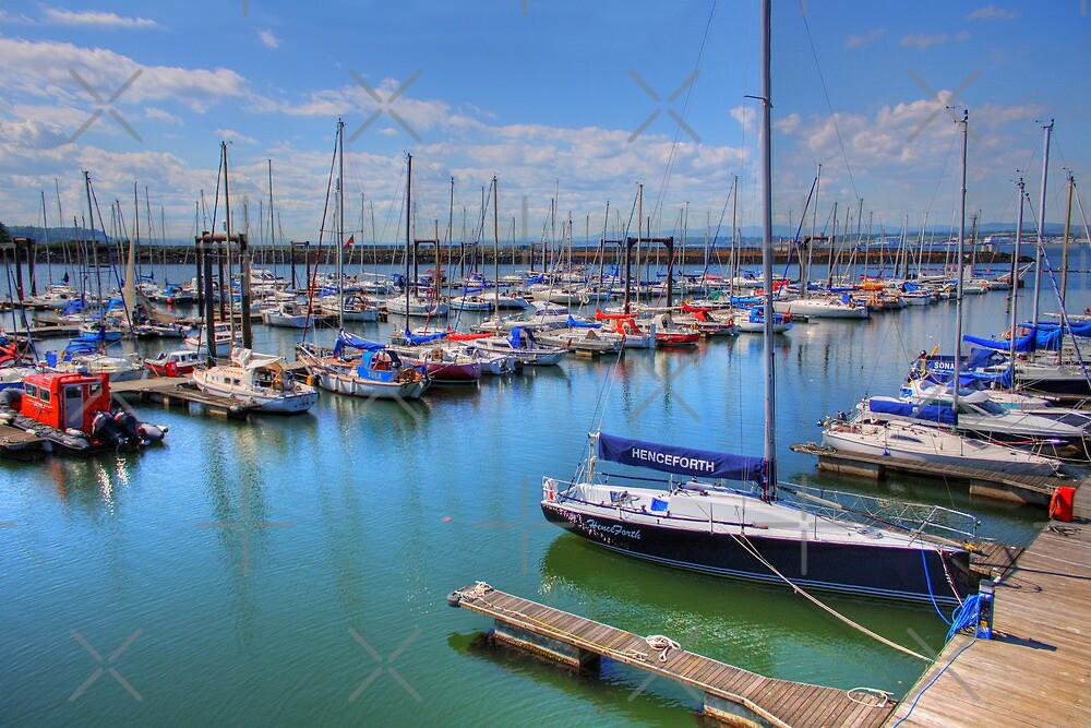 Port Edgar Marina by Tom Gomez