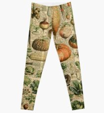 Autumn Fall Vegetables Vegetarian Vegan Thanksgiving Dictionary Organic Art Vintage Cottage Chic Leggings