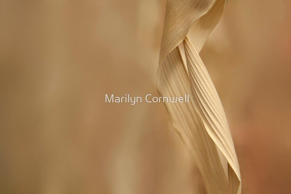 Winter's Garden Colours II by Marilyn Cornwell