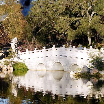 Bridge in Huntington BG, Sierra Marde by loiteke