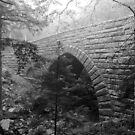 Hemlock Bridge, Maine by jrier