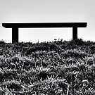 The Bench by GlennB