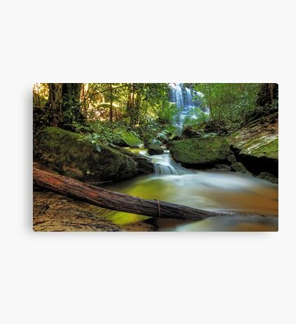 Serenity in the Mountains Canvas Print