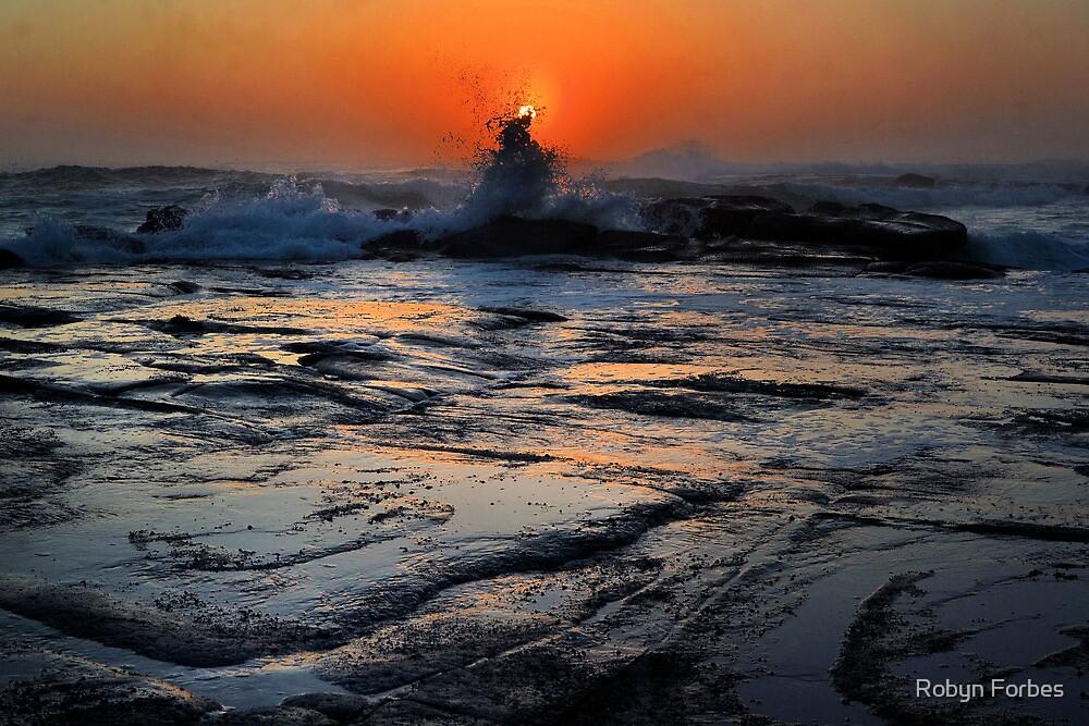 Splash at Sunrise by Robyn Forbes