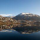 Sunny Bergen - Store Lungegårdsvann and Mt. Ulriken by Algot Kristoffer Peterson