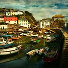 A corner of Mevagissey harbour by Brian Tarr