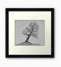 Hilltop Tree Framed Print