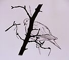 'Lift me like an olive branch and be my homeward dove' by SFlora