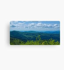 Appalachian Summer Canvas Print