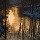 Early Winter Morning by Karol Livote