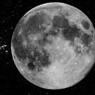 My Full Moon © by Dawn Becker
