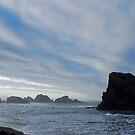 South Oregon Coast by North22Gallery