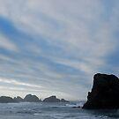 Oregon Coast by North22Gallery