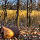 Cracker Barrel by Euge  Sabo