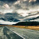 Dawn Road by meredithnz