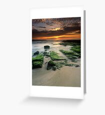 """Alone"" ∞ Shellharbour, NSW - Australia Greeting Card"