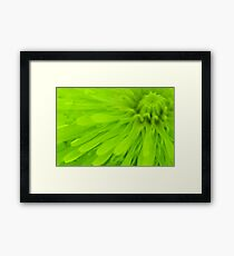 Bright Lime Green Wall Art Framed Print