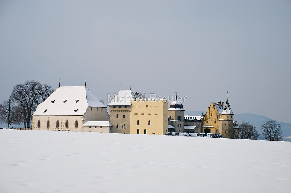 Lenzburg castle seen over a snowy hilltop by Michael Brewer