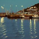 St Johns Harbor, Newfoundland by DebYoung