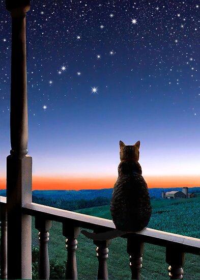 Virgo at Dawn's Light by Kathleen Horner