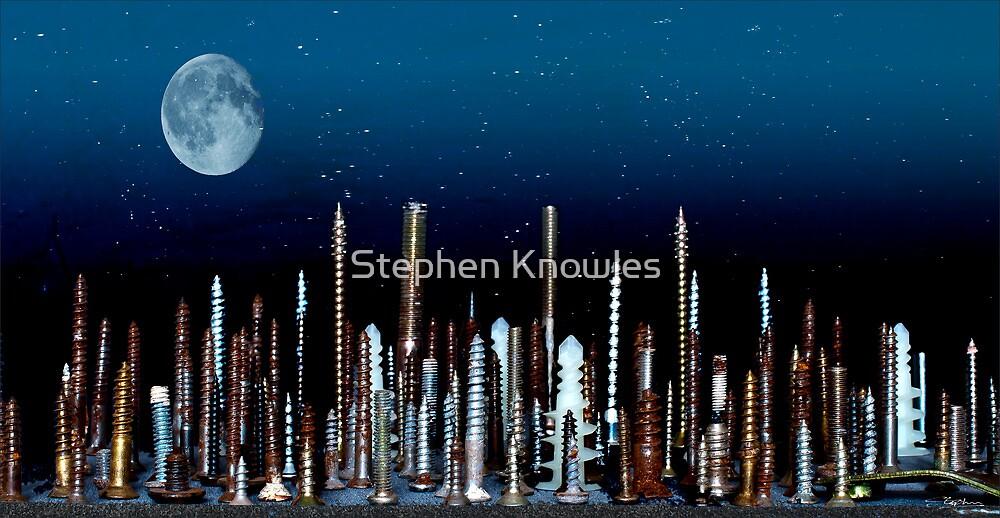 Screw York City by Stephen Knowles