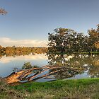Rivers Bend (Panoramic) - Murray River ,Albury , NSW - The HDR Experience by Philip Johnson