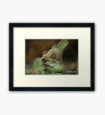 who said nature was always beautiful? Framed Print
