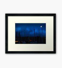 Right out My Backyard Series: Moonlight Secrets Framed Print