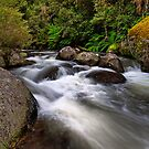 Manning River, Barrington Tops by Richard  Windeyer