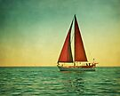 Red Sails...take me away by Suzanne Cummings