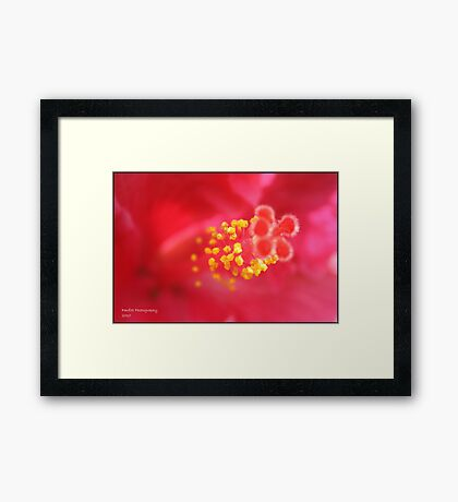 Macro Framed Print