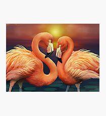 Flamingo Love Photographic Print