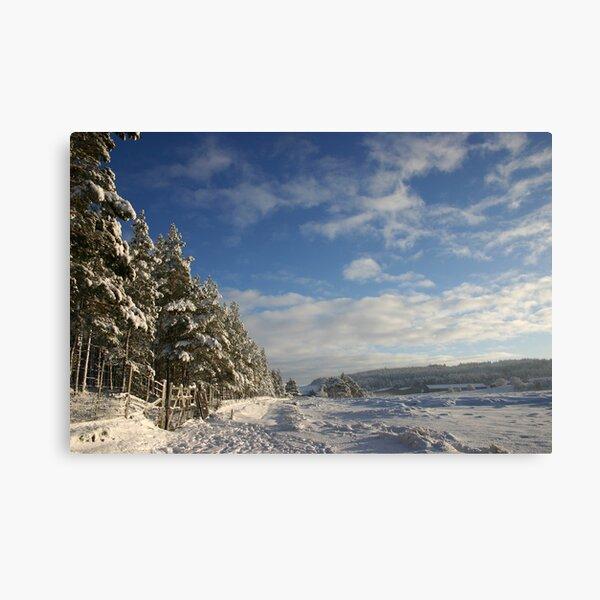 Christmas Day, Tomatin, Cairngorm & Monadhliath Canvas Print