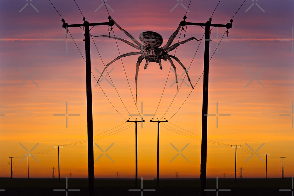 Arachnophobia...! by Geoff Carpenter