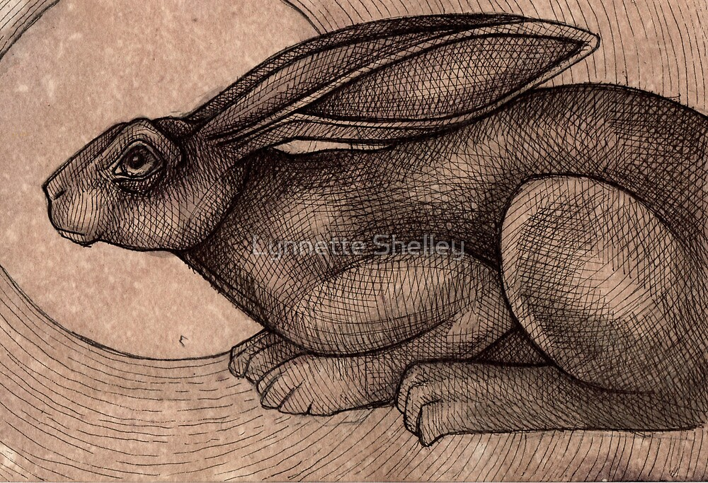 Crouching Hare by Lynnette Shelley