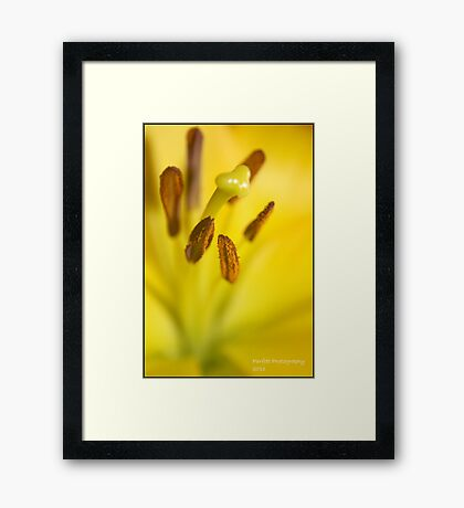 yellow close up Framed Print