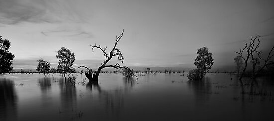 Menindee Devoid of Colour by Malcolm Katon
