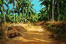 Path through a coconut grove by Jasna