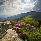 Roan Mountain From Appalachian Trail Near Jane's Bald by Dave Allen