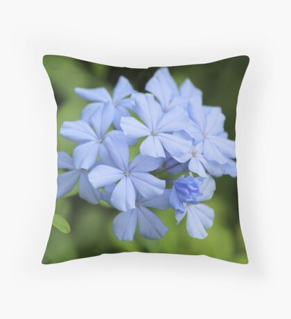 Blue Phlox Throw Pillow
