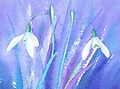 Icy snowdrops by Jacki Stokes