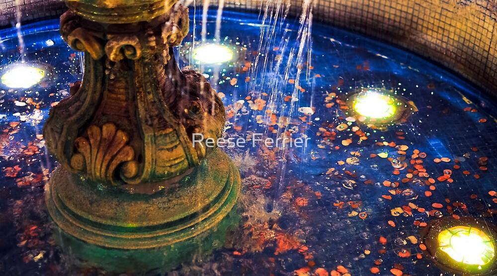 Wishing Water Fountain by Reese Ferrier