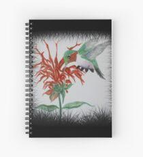 Anna's Hummingbird and Bee Balm Spiral Notebook