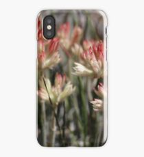 Conostylis buds iPhone Case/Skin