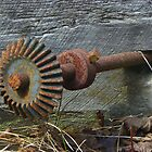 A Rusty Something by MaryinMaine