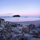 Pink Evening by meredithnz