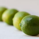 oh b(lime)y by Hege Nolan