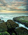 """Pastel Dusk"" ∞ Woody Head, NSW - Australia by Jason Asher"